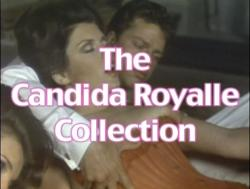The Candida Royalle Collection