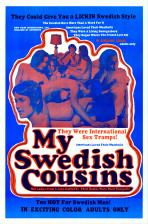 My Swedish Cousins Movie Poster